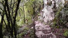 Дикий спуск с горы Ахун